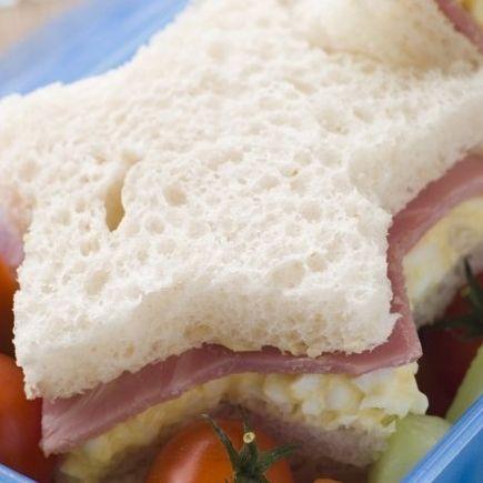 Økologisk mad i Folkeskolen