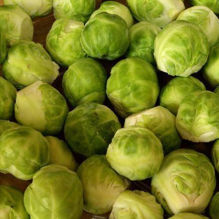 Spis bæredygtigt: Brug sæsonens råvarer