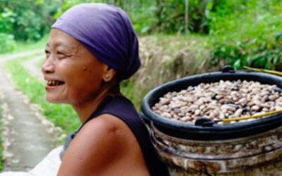 """Bælgfrugter, bæredygtighed, velsmag og """"nye"""" produkter"""
